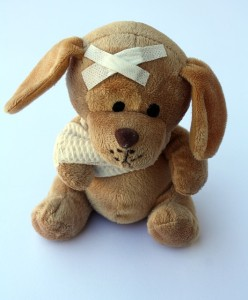 Teddy verletzt - Pixabay